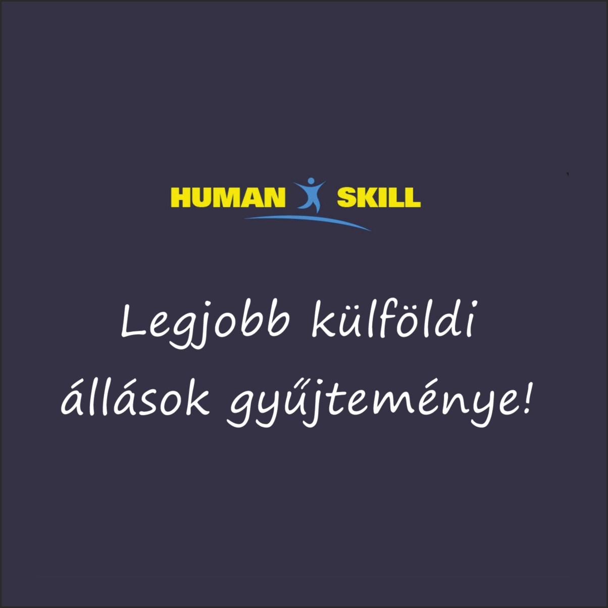 Humanskillreferencia kép